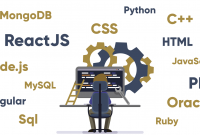 Become a Best Full Stack Developer in India 2020